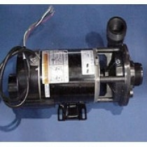 HOTSPRING SPAS JET PUMP,1HP 2SP 115V 60HZ 1.5  WATKINS WAVEMASTER 3000/5000, 34677